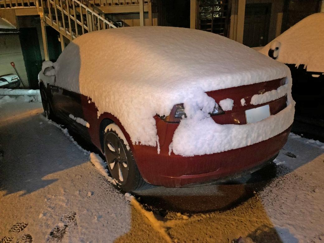 SnowCoveredTesla.JPG